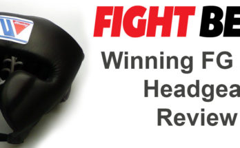 Winning FG2900 Comperensive Review