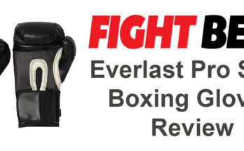 Everlast Pro Style Boxing Gloves Review