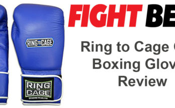 Top 15 Best Boxing Gloves [Definitive List 2019] | FIGHTBEST COM